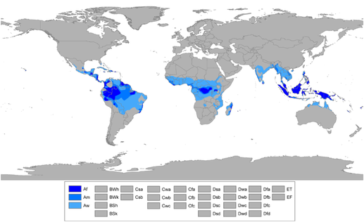 The Climate of Tropical Regions  The British Geographer